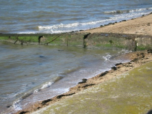 Seaweed at high tide in Southend